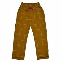 Boys Trousers W20 - Checked Mustard